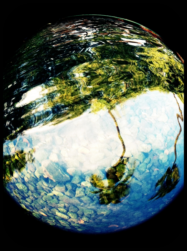 pond and fountain fisheye